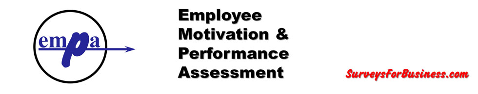Employee Motivation And Performance Assessment